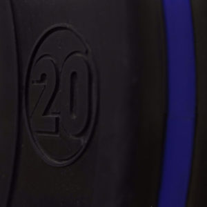 0000065_20-kg-pro-series-training-bumper-pair_550
