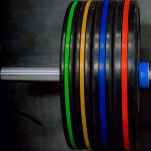 0000071_25-kg-pro-series-training-bumper-pair_550